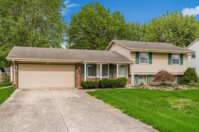 960 Toulon Avenue, Marion, OH 43302 (MLS #221041138) :: Jamie Maze Real Estate Group