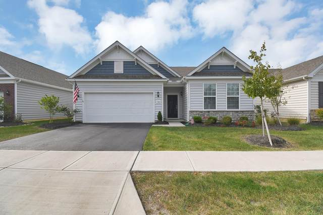 5361 Bulleit Drive #48, Westerville, OH 43081 (MLS #221041175) :: Sandy with Perfect Home Ohio