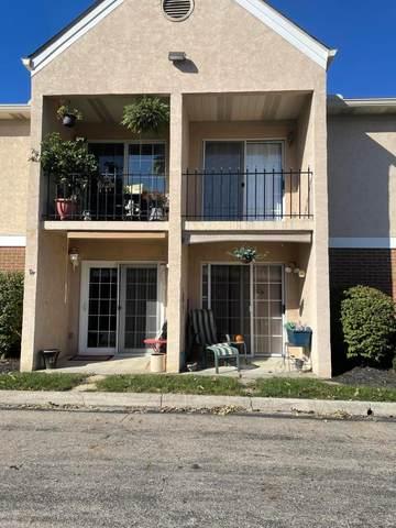 7150 E Main Street D208, Reynoldsburg, OH 43068 (MLS #221041259) :: Sam Miller Team