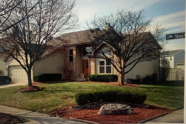 576 Moss Oak Avenue, Gahanna, OH 43230 (MLS #221041298) :: Craig & Amy Balster