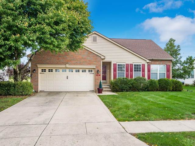 2419 Alisons Street, Lewis Center, OH 43035 (MLS #221041348) :: The Tobias Real Estate Group