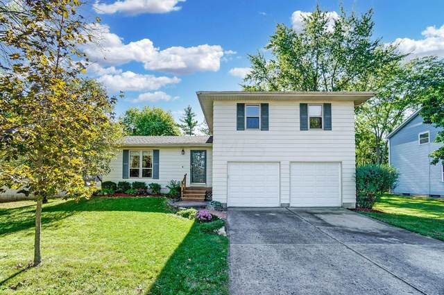 2365 Salem Avenue, Grove City, OH 43123 (MLS #221041620) :: Sandy with Perfect Home Ohio