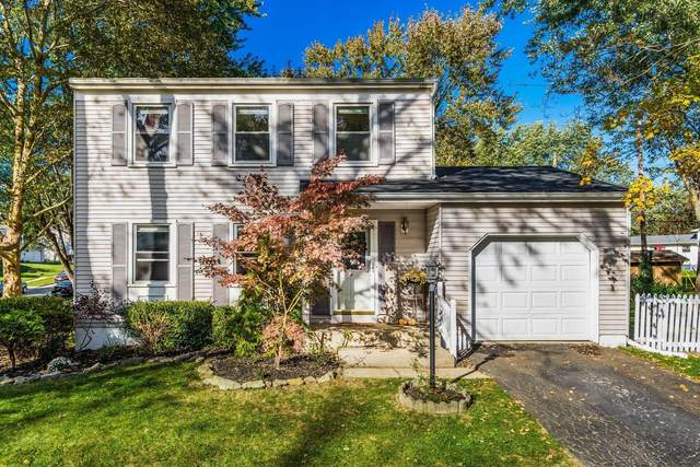 3456 Brazzaville Road, Westerville, OH 43081 (MLS #221041725) :: Sandy with Perfect Home Ohio