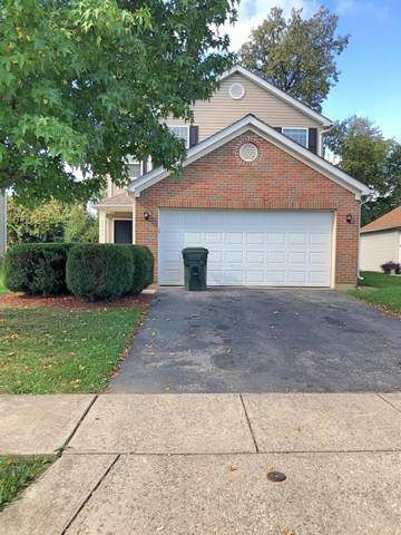 3137 Gallant Drive, Columbus, OH 43232 (MLS #221041730) :: Sandy with Perfect Home Ohio