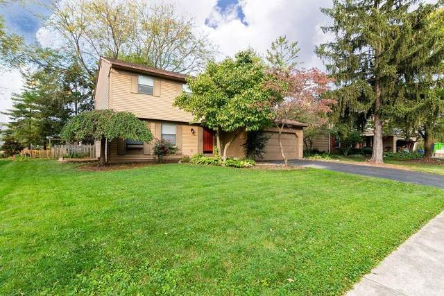 117 Ormsbee Avenue, Westerville, OH 43081 (MLS #221041760) :: Craig & Amy Balster