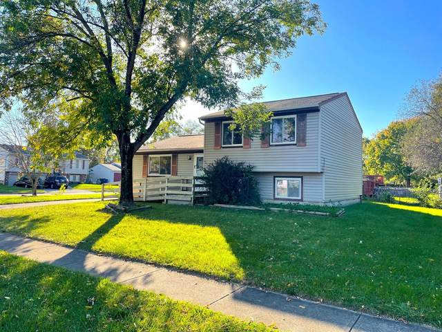 4011 Grand Bend Drive, Groveport, OH 43125 (MLS #221041772) :: Sandy with Perfect Home Ohio
