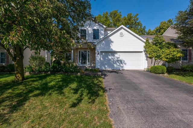 564 Thistleview Drive, Lewis Center, OH 43035 (MLS #221041871) :: Sandy with Perfect Home Ohio