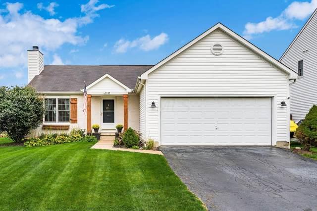 1137 Nutmeg Drive, Marysville, OH 43040 (MLS #221041953) :: Susanne Casey & Associates