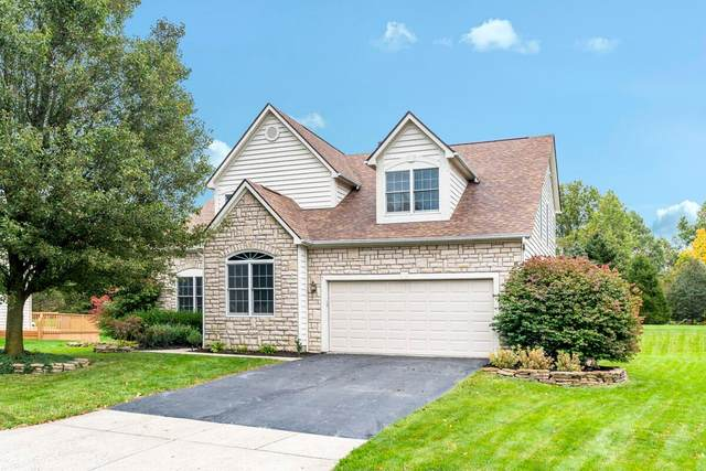 6605 Hermitage Drive, Westerville, OH 43082 (MLS #221042045) :: Berkshire Hathaway HomeServices Crager Tobin Real Estate