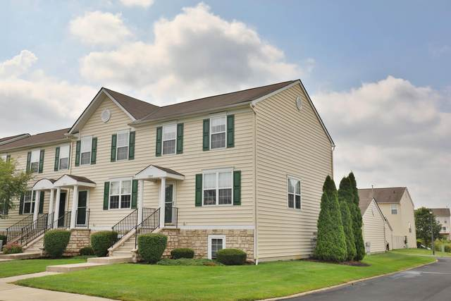 7205 Steel Dust Drive, New Albany, OH 43054 (MLS #221042076) :: RE/MAX Metro Plus