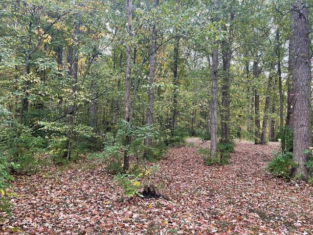 0 S Section Line Road, Delaware, OH 43015 (MLS #221042080) :: Berkshire Hathaway HomeServices Crager Tobin Real Estate