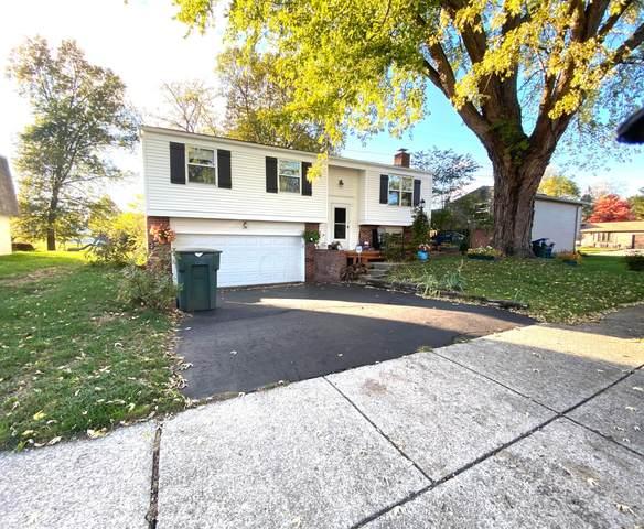 3787 Big Walnut Drive, Groveport, OH 43125 (MLS #221042375) :: Susanne Casey & Associates