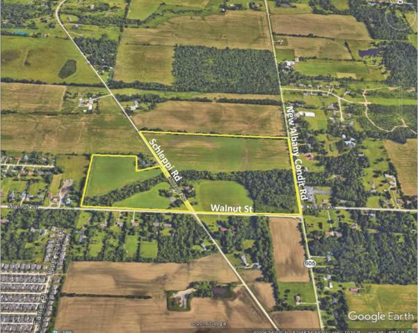 7724 Schleppi Road, Westerville, OH 43081 (MLS #216043333) :: CARLETON REALTY
