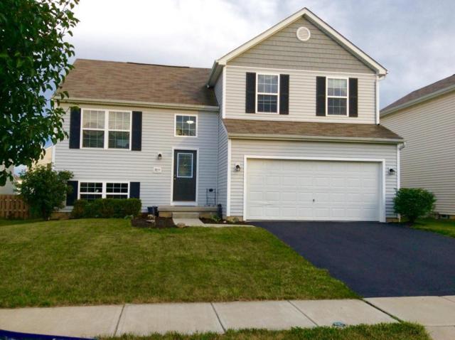 3855 Wolf Creek Road, Grove City, OH 43123 (MLS #217022104) :: Signature Real Estate