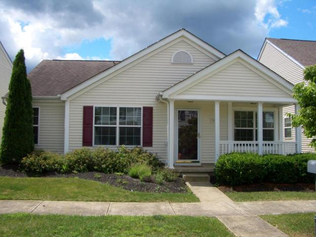 7197 Hillmont Drive, New Albany, OH 43054 (MLS #217022506) :: RE/MAX ONE