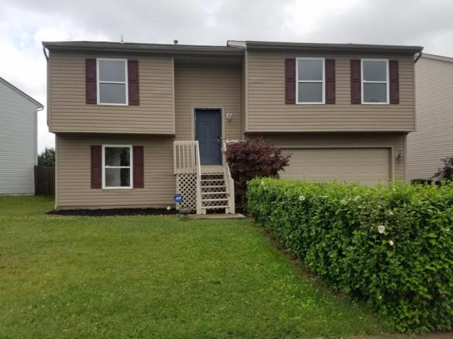 7601 Farm Hill Drive, Blacklick, OH 43004 (MLS #217026622) :: Core Ohio Realty Advisors