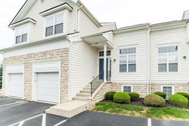 6002 Andrew John Drive, New Albany, OH 43054 (MLS #217029686) :: The Columbus Home Team