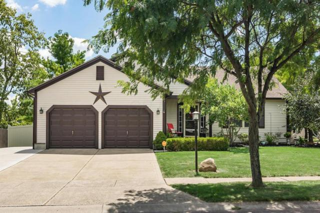 2205 Buttercup Lane, Grove City, OH 43123 (MLS #217029773) :: The Barker Team