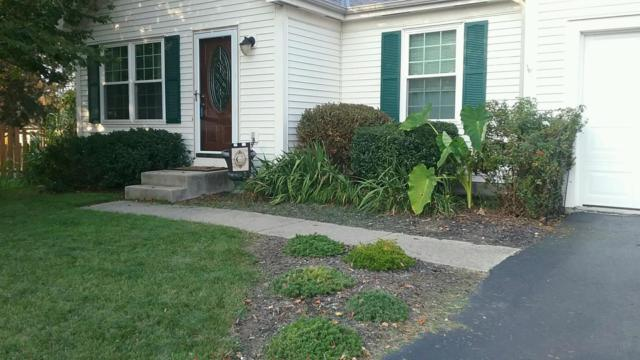 2320 Nottaway Court, Grove City, OH 43123 (MLS #217034841) :: The Mike Laemmle Team Realty