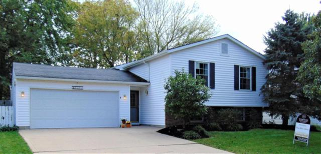 8204 Longhorn Road, Powell, OH 43065 (MLS #217037411) :: The Raines Group