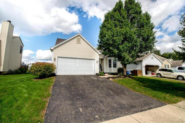 3512 Brook Spring Drive, Grove City, OH 43123 (MLS #217037763) :: The Clark Realty Group @ ERA Real Solutions Realty
