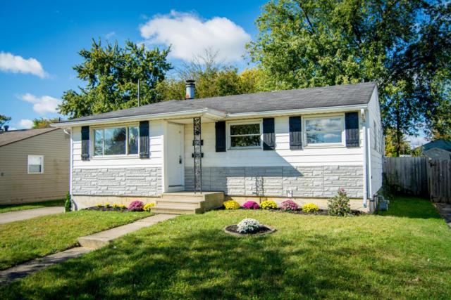 803 Maurine Drive, Columbus, OH 43228 (MLS #217038035) :: The Mike Laemmle Team Realty