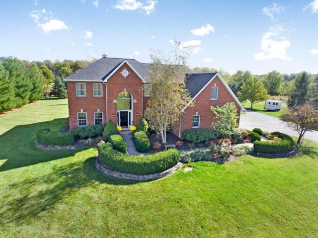 6738 Blue Church Road, Sunbury, OH 43074 (MLS #217038119) :: Cutler Real Estate