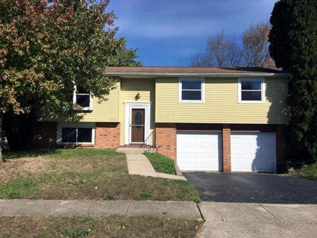 3838 Big Walnut Drive, Groveport, OH 43125 (MLS #217039523) :: Exp Realty