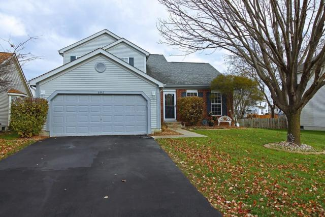 6442 Fox Hill Drive, Canal Winchester, OH 43110 (MLS #217041519) :: The Mike Laemmle Team Realty