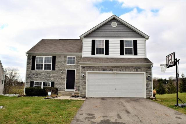 5840 Mattox Circle, Orient, OH 43146 (MLS #217041692) :: The Mike Laemmle Team Realty
