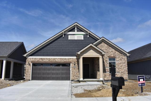 10282 Spicebrush Drive, Plain City, OH 43064 (MLS #217043335) :: Julie & Company
