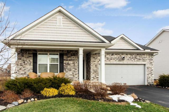 437 Red Stag Road, Delaware, OH 43015 (MLS #218001572) :: Berkshire Hathaway Home Services Crager Tobin Real Estate