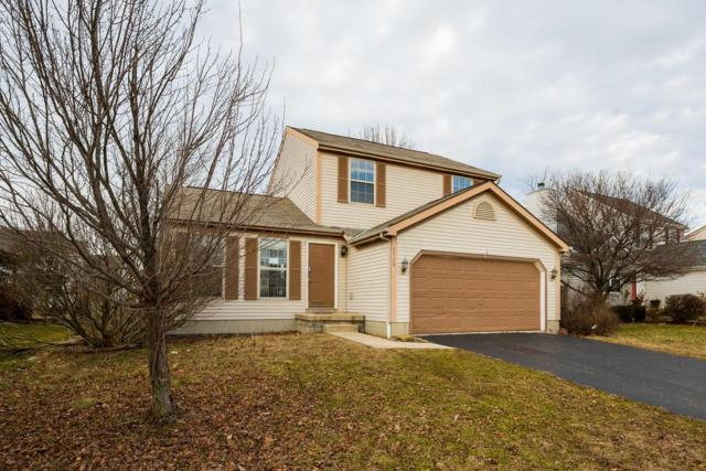 8536 Cadence Drive, Galloway, OH 43119 (MLS #218003846) :: The Mike Laemmle Team Realty