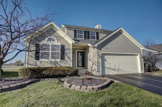 8552 Cadence Drive, Galloway, OH 43119 (MLS #218008591) :: Signature Real Estate