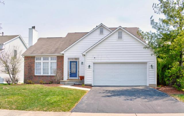 4774 Bosk Drive, New Albany, OH 43054 (MLS #218010764) :: RE/MAX ONE