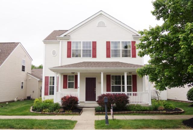 7236 Alma Terrace Drive, New Albany, OH 43054 (MLS #218010795) :: RE/MAX ONE