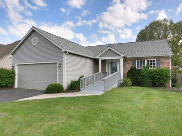 1577 Cottonwood Drive, Lewis Center, OH 43035 (MLS #218012236) :: Exp Realty