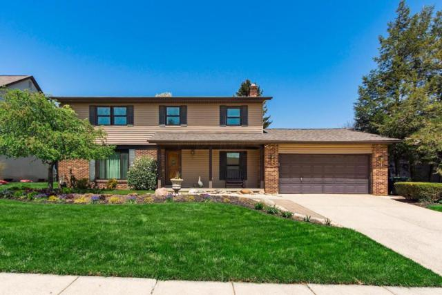 3342 Noreen Drive, Columbus, OH 43221 (MLS #218012374) :: Exp Realty