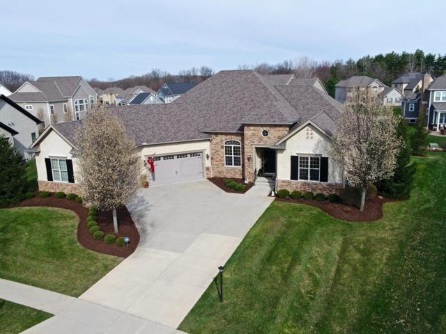 6281 Braymoore Drive, Galena, OH 43021 (MLS #218013208) :: RE/MAX ONE