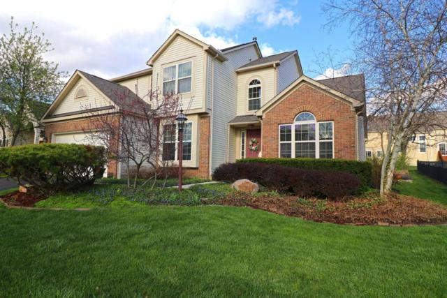 7783 Tree Lake Boulevard, Powell, OH 43065 (MLS #218013233) :: Signature Real Estate