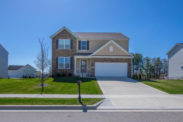 10009 Wintercreeper Court, Plain City, OH 43064 (MLS #218014832) :: Signature Real Estate