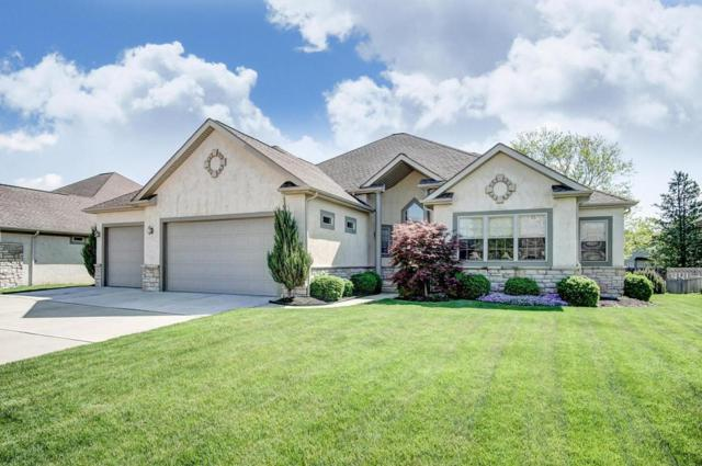 1733 Tuscarora Drive, Grove City, OH 43123 (MLS #218015451) :: Exp Realty