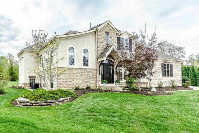 5321 Berwanger Drive, Powell, OH 43065 (MLS #218016244) :: RE/MAX ONE