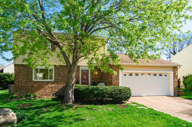 3080 Frobisher Avenue, Dublin, OH 43017 (MLS #218016338) :: RE/MAX ONE