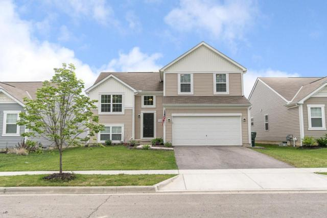 350 Cloverhill Drive, Galloway, OH 43119 (MLS #218016861) :: Exp Realty