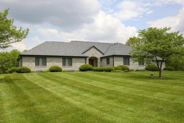 8910 Diley Road, Canal Winchester, OH 43110 (MLS #218016928) :: The Mike Laemmle Team Realty