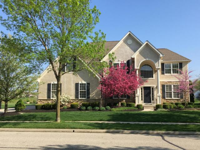 6732 Ballantrae Place, Dublin, OH 43016 (MLS #218016931) :: Exp Realty