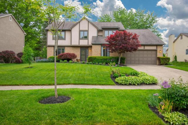 79 Juniper Avenue, Westerville, OH 43081 (MLS #218016933) :: Exp Realty