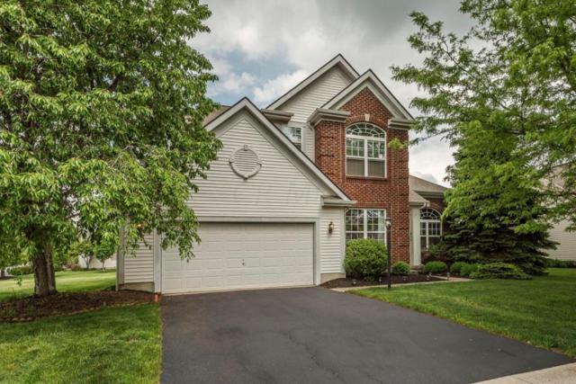 7801 Wiltshire Drive, Dublin, OH 43016 (MLS #218017262) :: Signature Real Estate