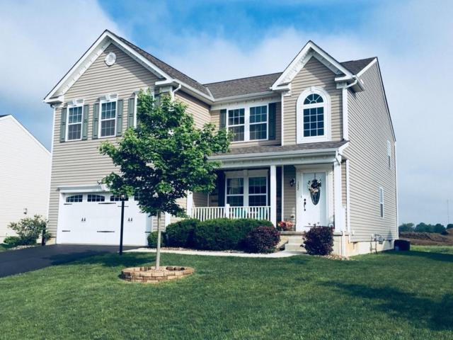 132 Parkdale Drive, Johnstown, OH 43031 (MLS #218017484) :: Susanne Casey & Associates